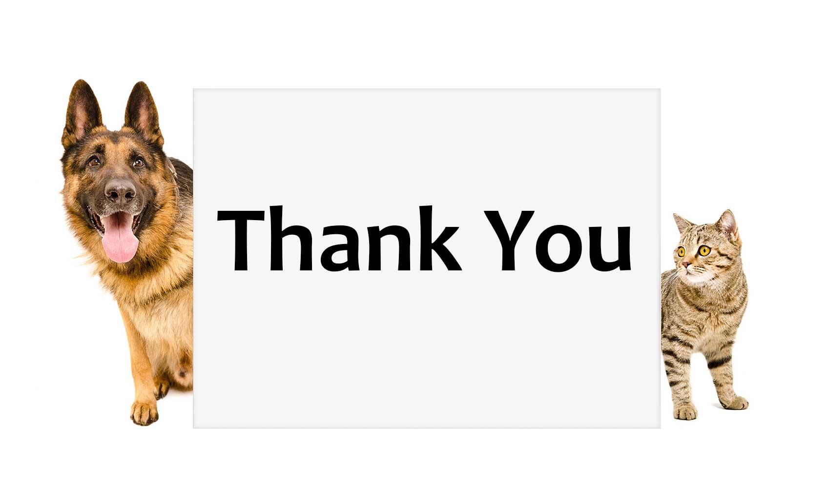 thank_en