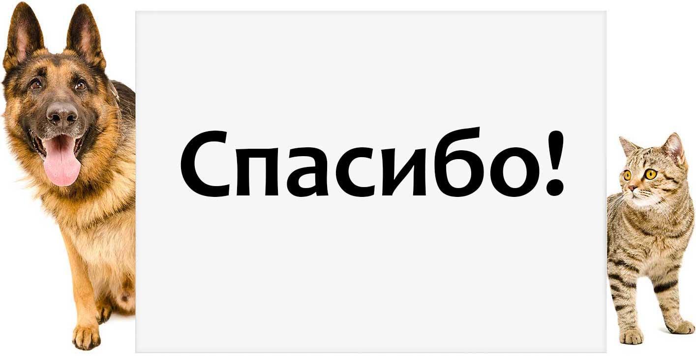 thank_ru