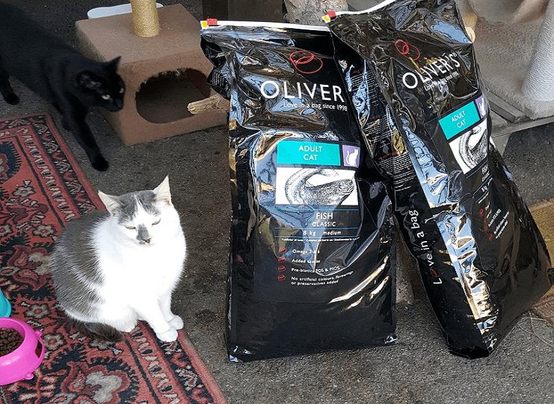 beglobis-cat-food