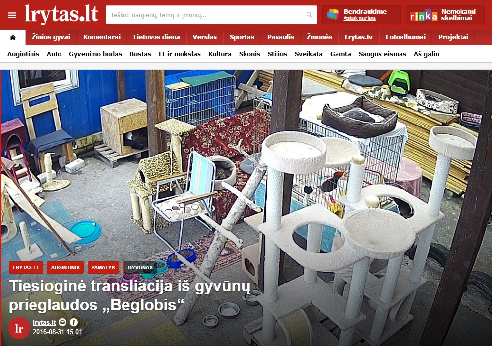 lrytas-lt_beglobis