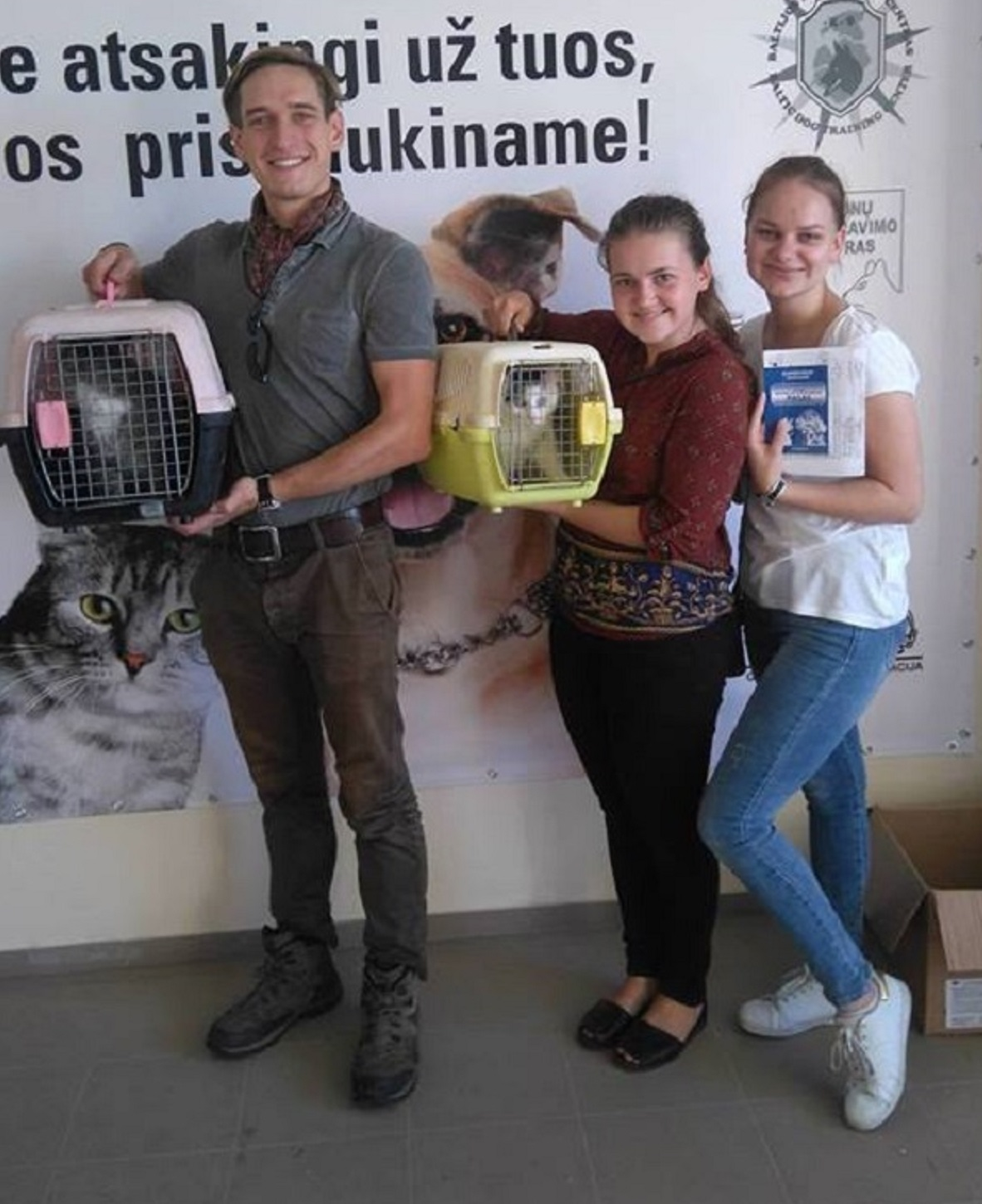 two-adopted-cats-from-shelter-nuaras-in-kaunas