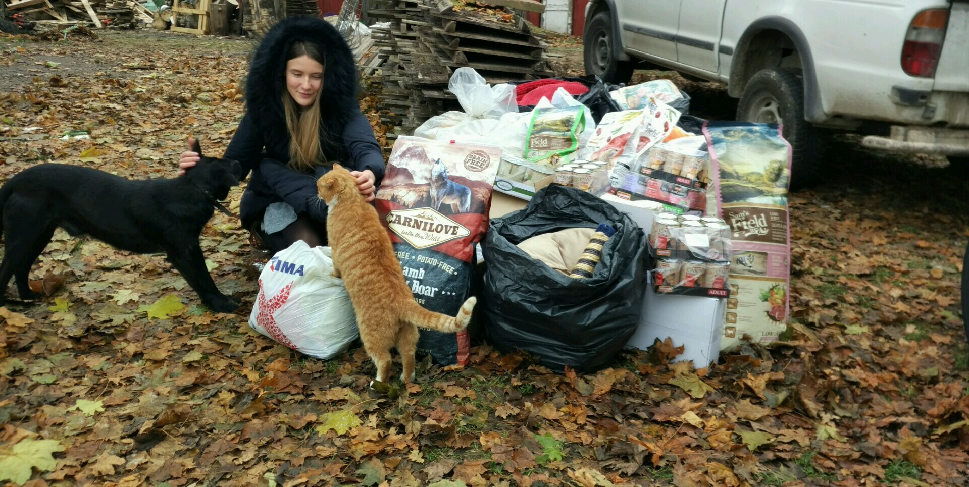 kepu_help_dog_cat